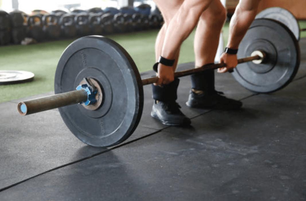 В чем разница между катаболизмом и мышечным анаболизмом?